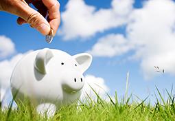 iStock_Piggy_Bank_Field