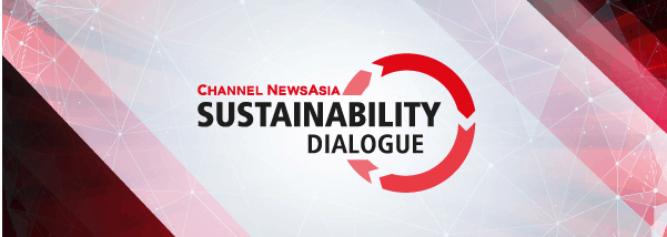 Channel News Asia - Sustainability Dialogue - AVPN