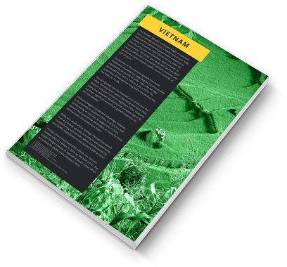 Vietnam Landscape Report