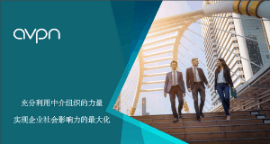 Leveraging Intermediaries to Maximise Corporate Social Impact (Mandarin)