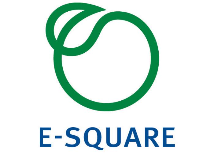 E-Square-Inc..png