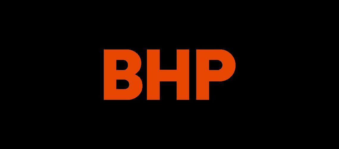 avpn_logo_bhp