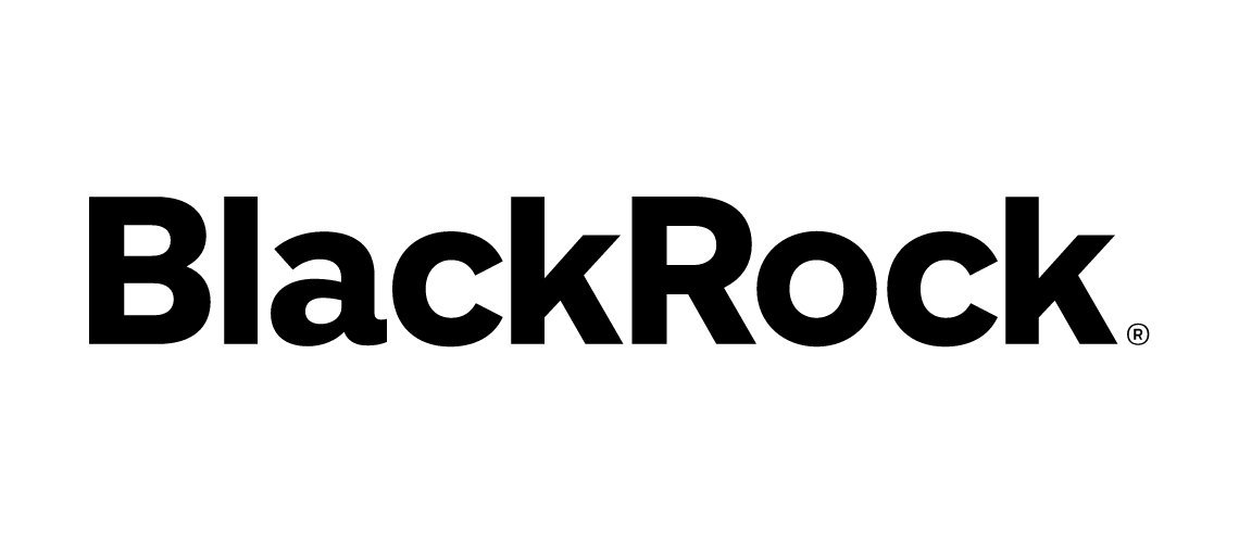 avpn_logo_blackrock