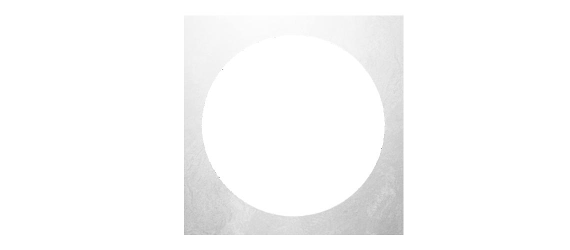avpn_logo_brace_white