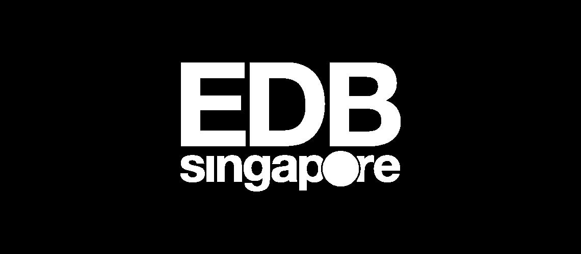 avpn_logo_edpsingapore_white