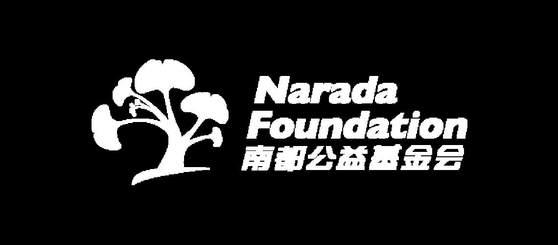 avpn_logo_narada_white.png