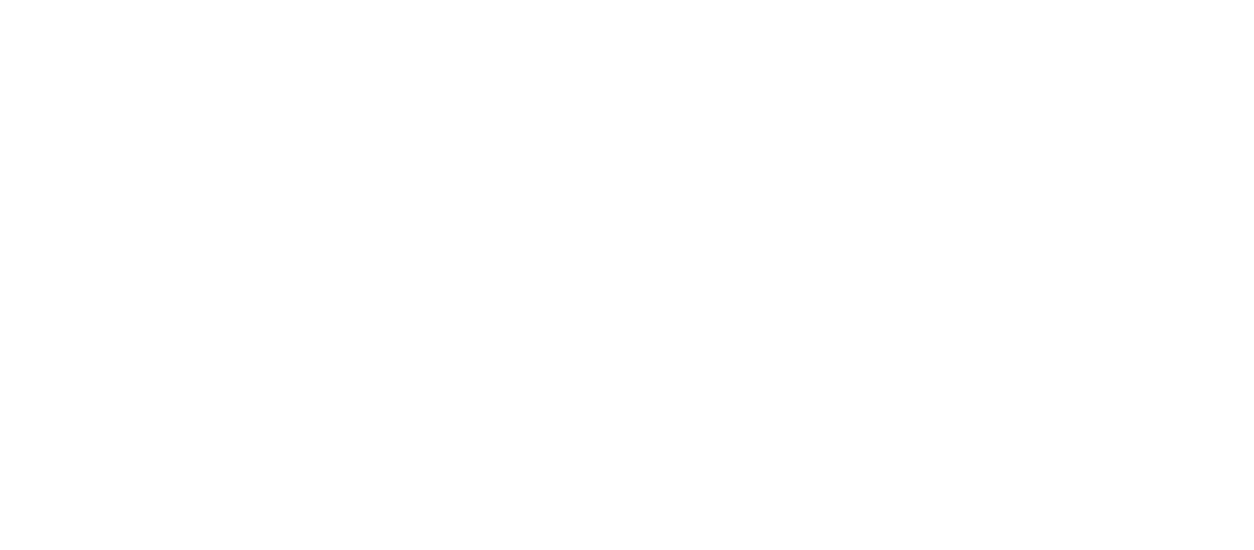 avpn_logo_svhk_white.png