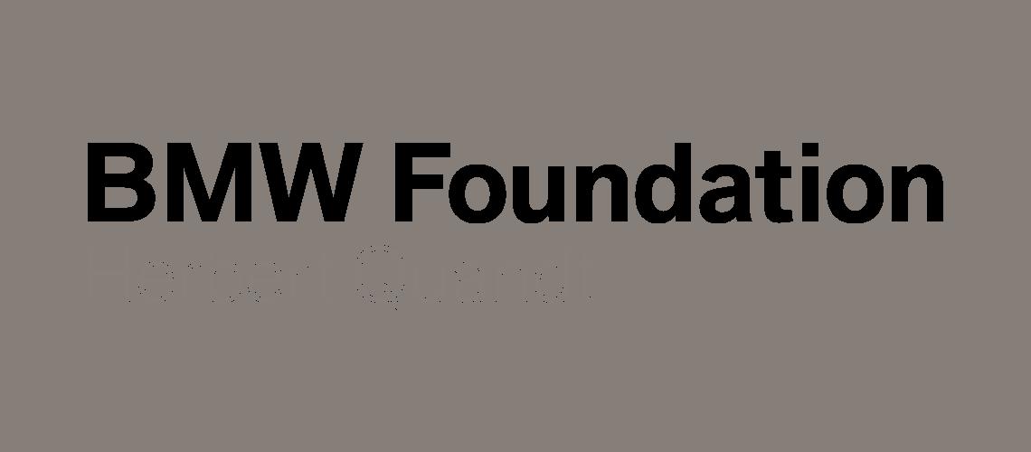 AVPN_logo_bmw