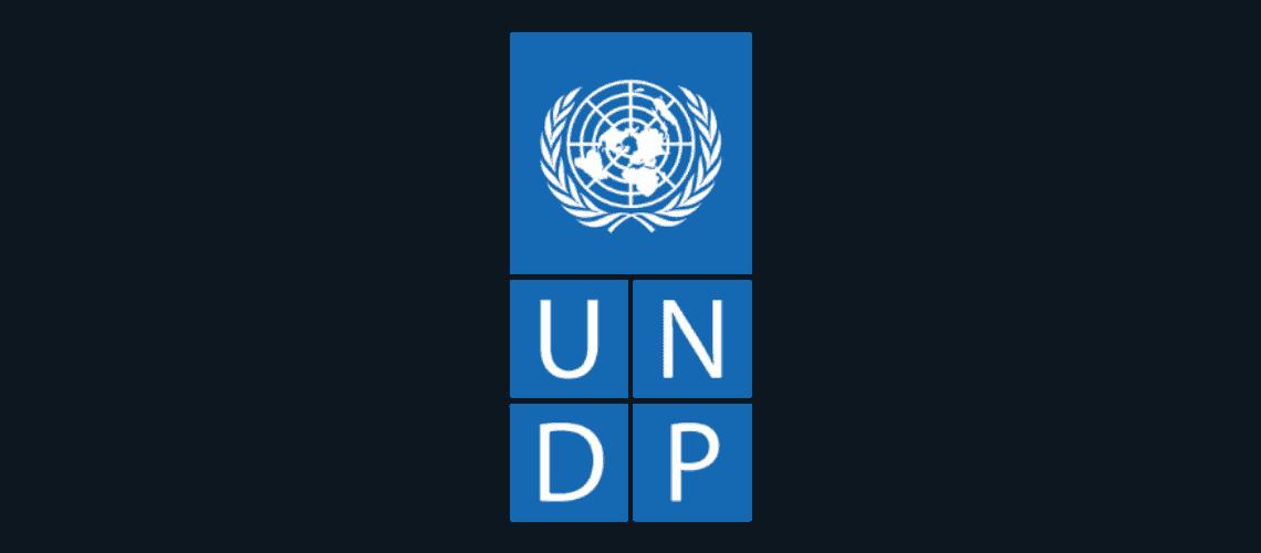 avpn_logo_undp